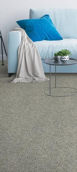 carpet-basement   Tish flooring