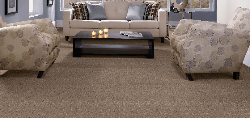 Dakota Trail carpet