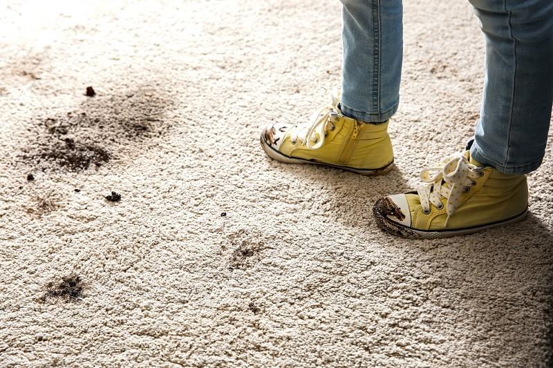 mud stains on carpet