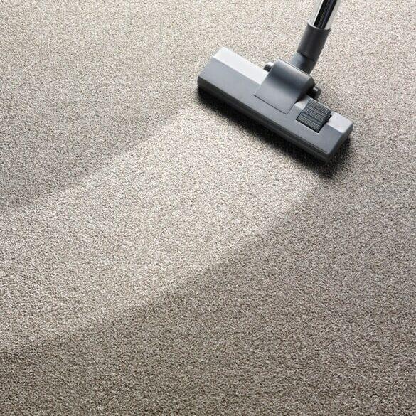 carpet-cleaning   Tish flooring